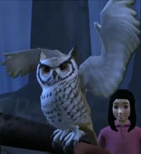 Artemis (owl)
