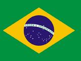 Brazilian National Quidditch team