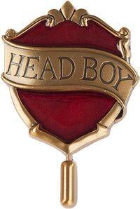 HeadBoyPin.jpg