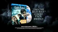 Harry Potter and the Deathly Hallows, Part 1 Final Battle