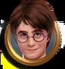 HarryMedallionPAS
