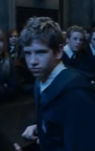 Hufflepuff boy that blames Harry Potter (I)