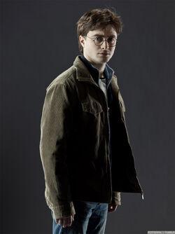 Harry Info.jpg
