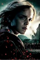 TDHp2 Textless Poster Hermione close