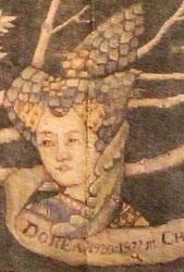Dorea Musta