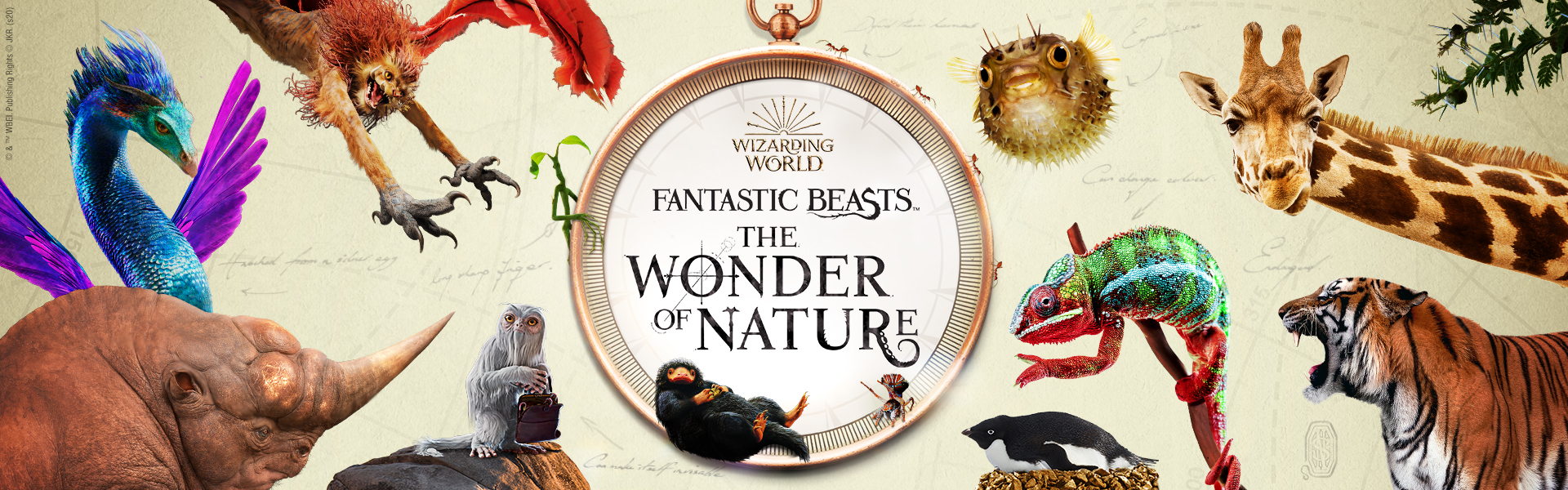 Fantastic Beasts: The Wonder of Nature (book)