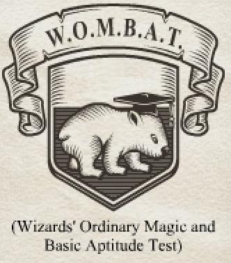 巫师普通魔法及基础资质测试