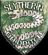 Slytherin™ Quidditch™ Badge