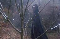 Zakapturzony Voldemort idący wzdłuż kadru za niewielkim drzewkiem
