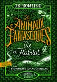 French 2020 Hogwarts Library FB