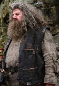 Hagrid OP.jpg