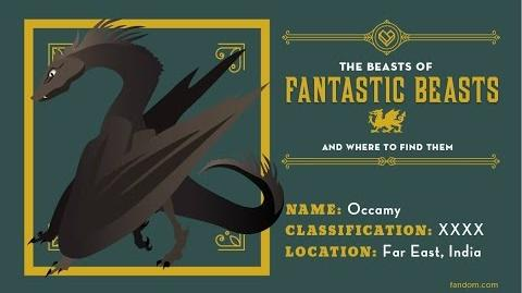 What_Is_An_Occamy?_The_Beasts_Of_Fantastic_Beasts_And_Where_To_Find_Them