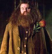 Hagrid2.jpg
