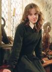 HermionePOA