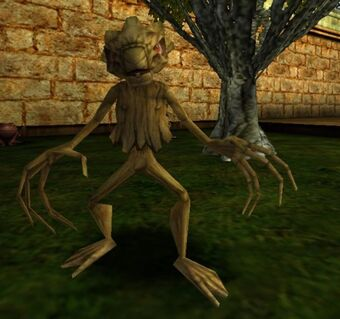 Bowtruckle Harry Potter Wiki Fandom See more of bowtruckle adventures on facebook. bowtruckle harry potter wiki fandom