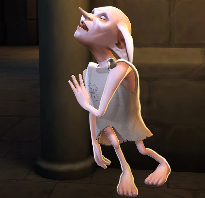 Unidentified house-elf near the Hogwarts kitchens