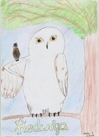 Hedwiga 001.jpg