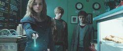 Hermione Granger using the Memory Charm DHF1.JPG