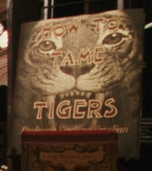 Comment Apprivoiser les Tigres