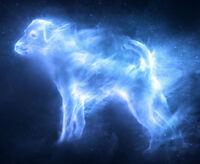 Ron's dog Patronus
