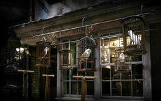 Diagon Alley - Eeylops Owl Emporium.jpg