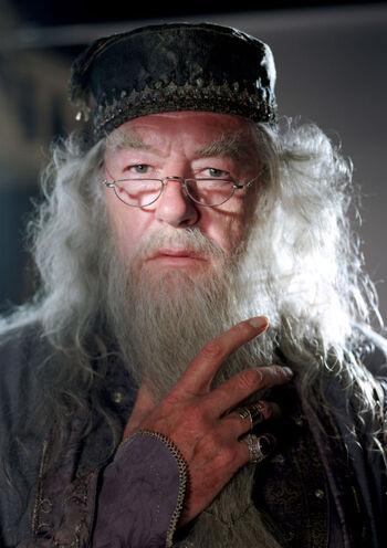 W Harrym Potterze