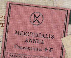 Mercurialis annua
