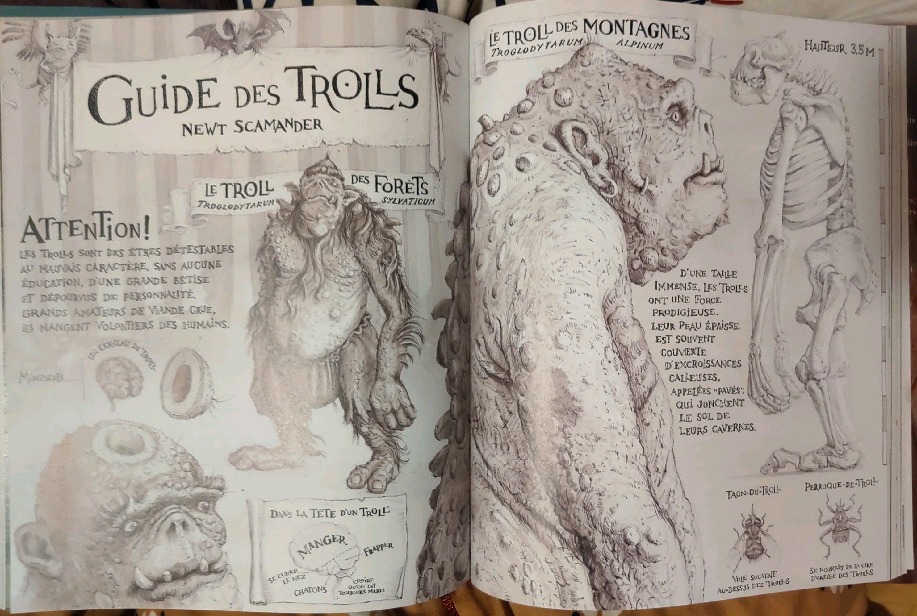 Guide des Trolls