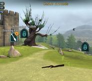 Castle-grounds