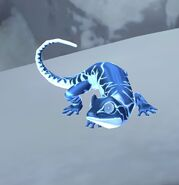 Frost Salamander at the Magical Creatures Reserve