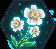 Sneezewort HM icon