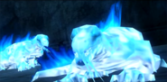 Frost Salamanders