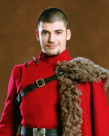 Viktor Krum Harry Potter Wiki Fandom Looking for a new way to deck out your home or office in harry potter? viktor krum harry potter wiki fandom