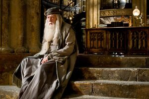 Dumbledore 1996.jpg