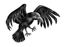 Lestrange Family Raven.png