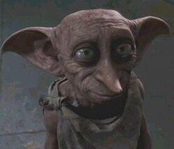 Dobby 2.jpg