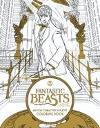 Fantastic Beasts and Where to Find Them Magical Characters and Places Colouring Book