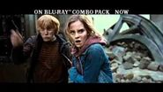 Harry Potter and the Deathly Hallows, Part 2 -- Ultra Violet