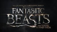 Fantastic Beasts and Where to Find Them VidCon Event Live