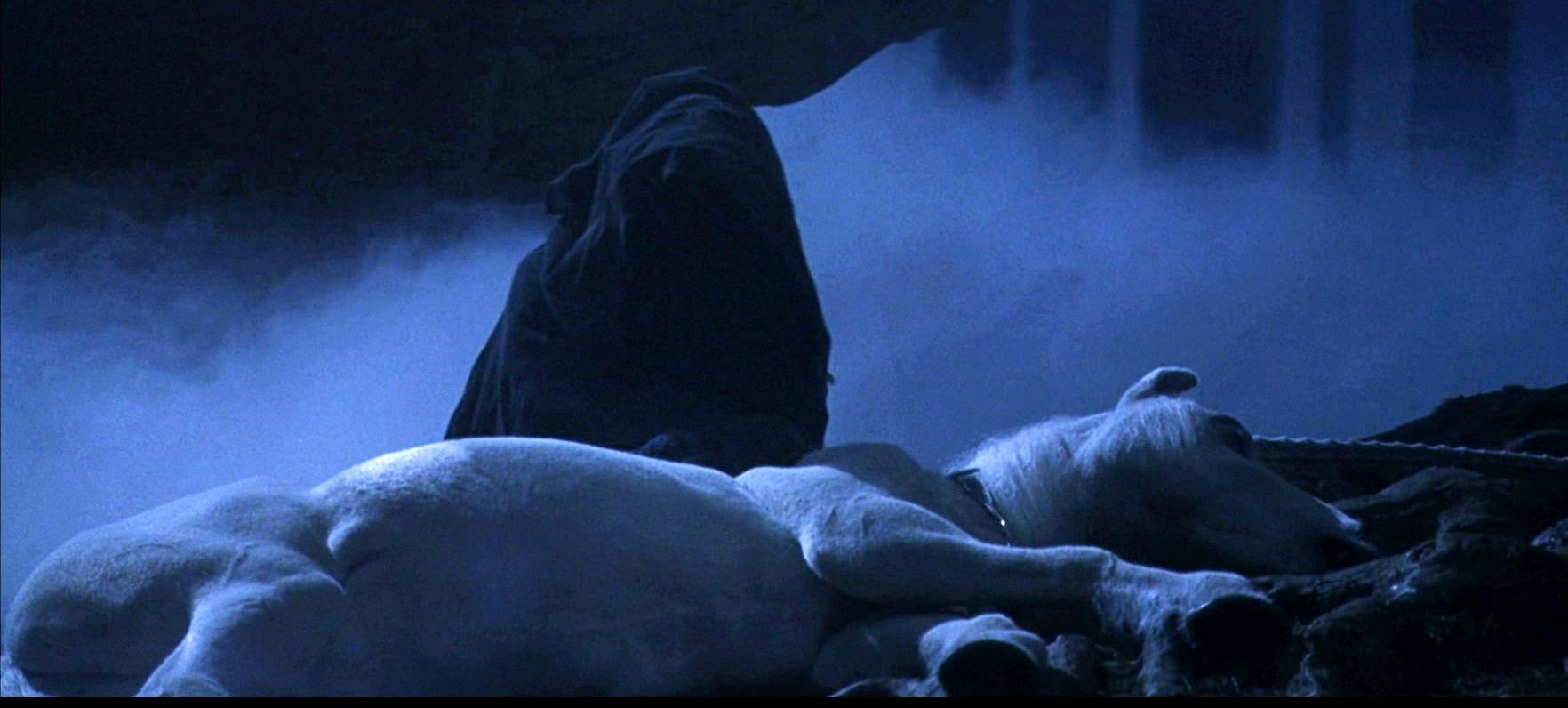 Detention in the Forbidden Forest (1992)