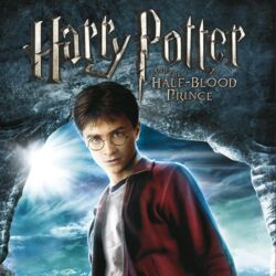Harry Potter and the Half-Blood Prince (video game)
