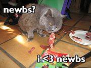 User Bite the Newbs