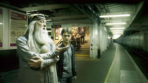 Dumbledore i Harry -1.jpg