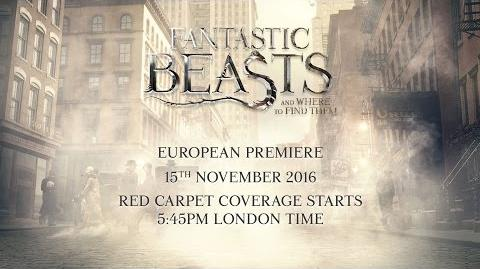 Fantastic Beasts And Where To Find Them Live European Premiere from London