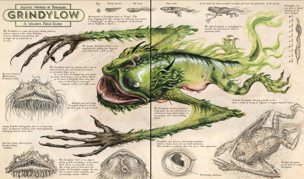 Merveilles aquatiques du Yorkshire : Guide pratique du sorcier