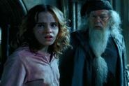 Dumbledore z hermioną