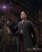 Wybór różdżki (Dziedzictwo Hogwartu)