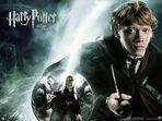 Ron-weasley-harry-potter-453979 800 6001.jpg