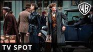 Fantastic Beasts The Crimes of Grindelwald - 'View' TV Spot - Warner Bros