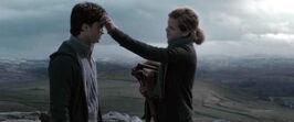 Harry- Hermione - Horcrux Hunt.jpg